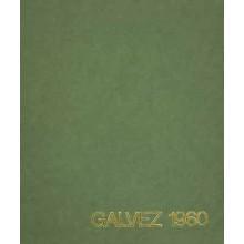 CATALOGO ESPECIALIZADO GALVEZ 1960, por Manuel Gálvez.